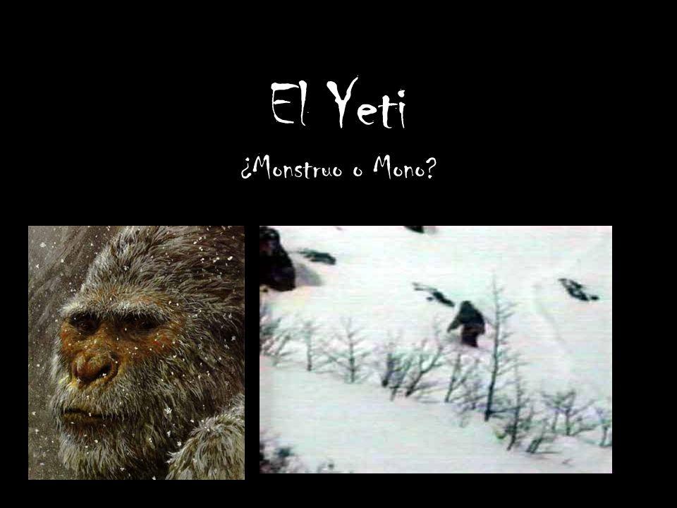 El Yeti ¿Monstruo o Mono