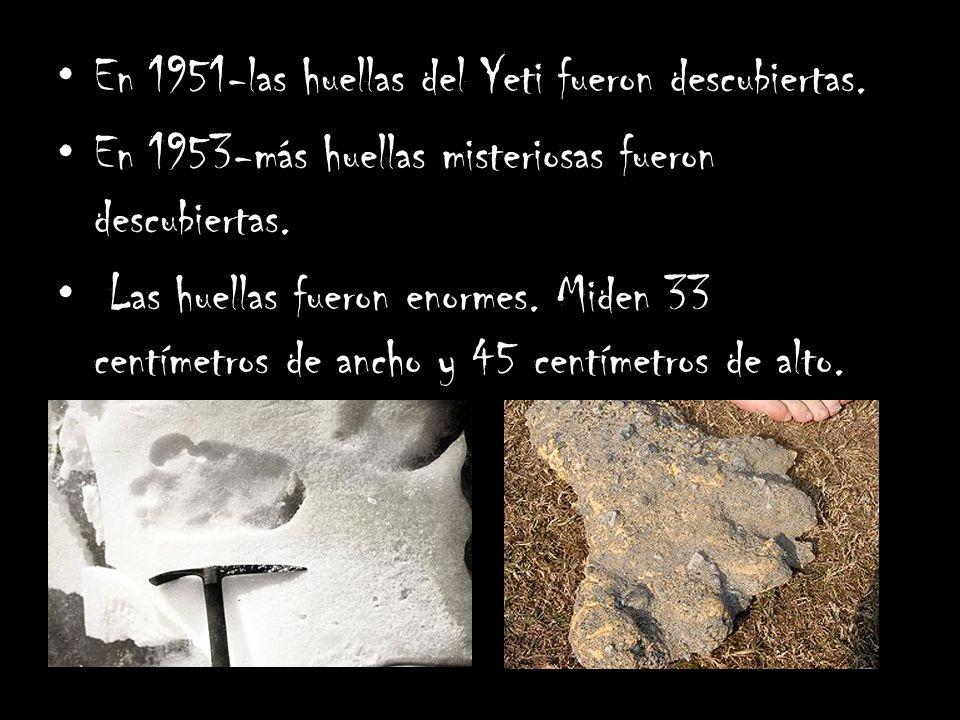 En 1951-las huellas del Yeti fueron descubiertas.