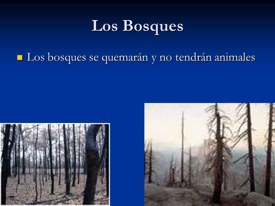 Los Bosques Los bosques se quemarán y no tendrán animales