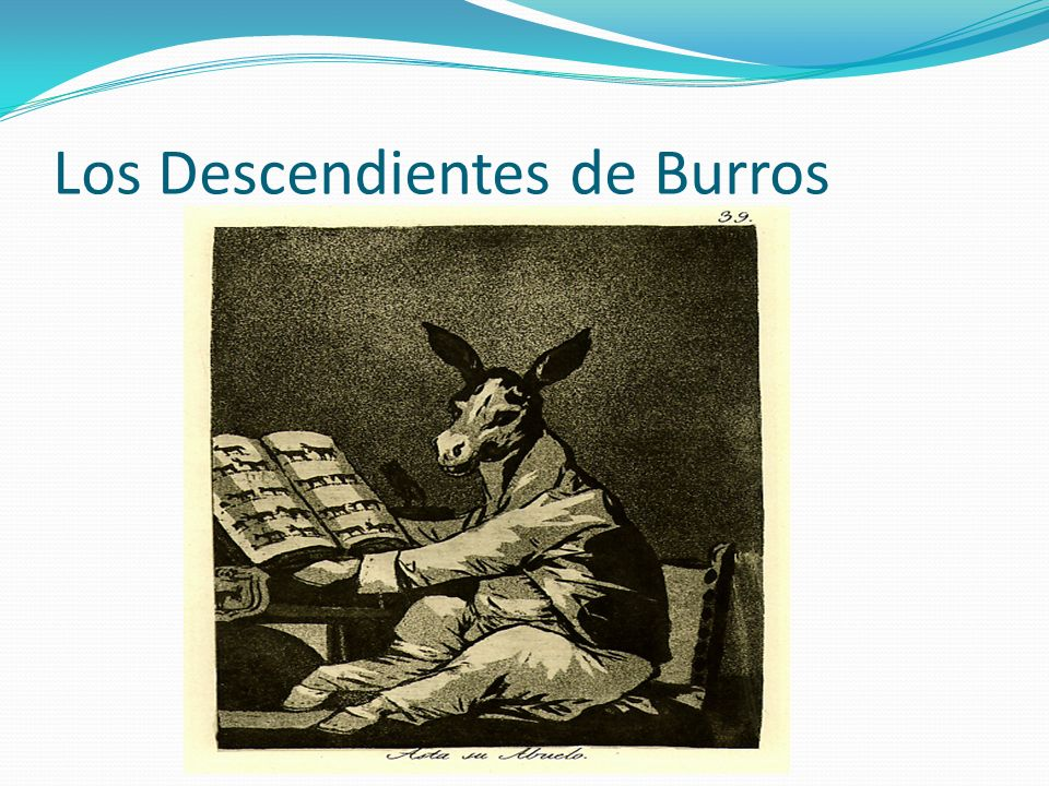 Los Descendientes de Burros