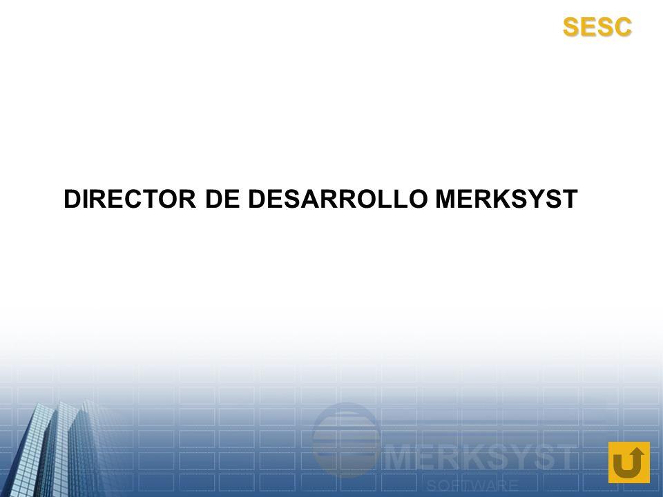 DIRECTOR DE DESARROLLO MERKSYST