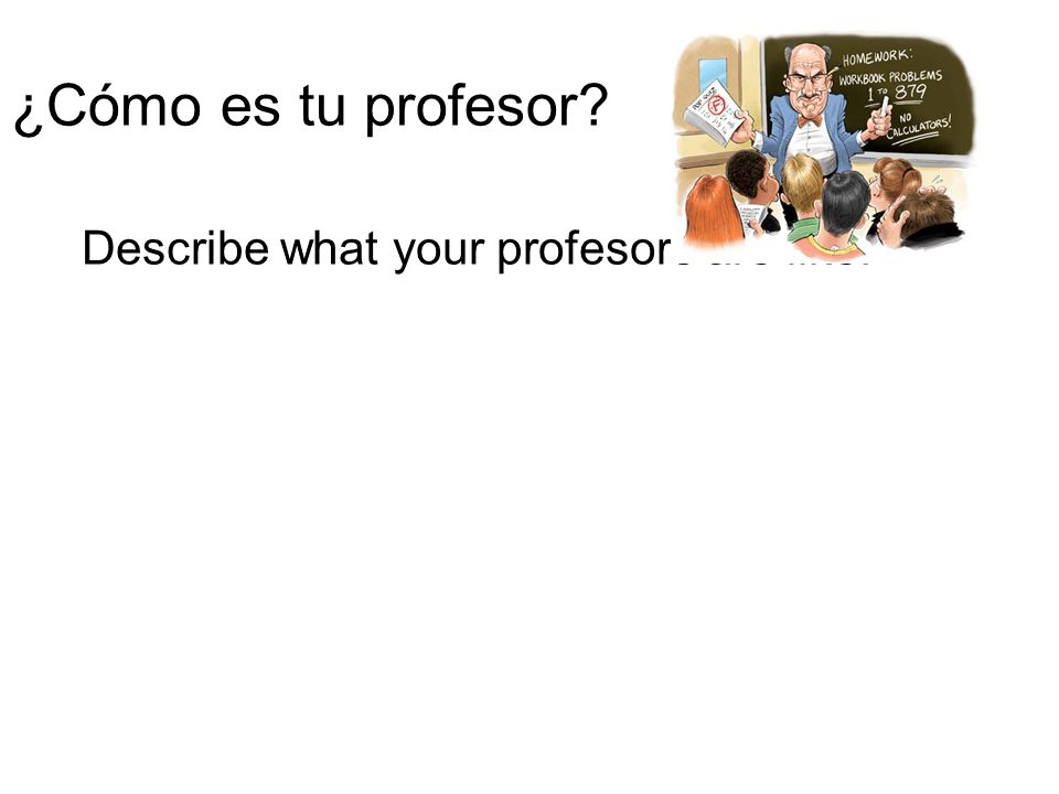 Describe what your profesors are like.