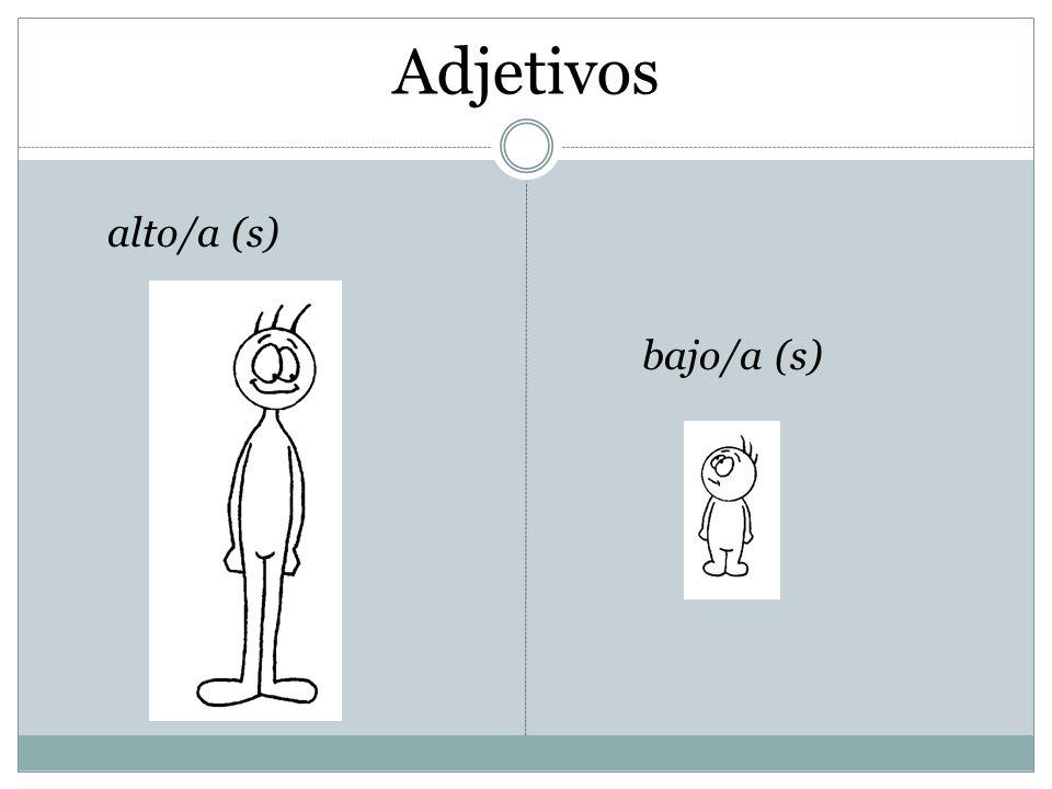 Adjetivos alto/a (s) bajo/a (s)
