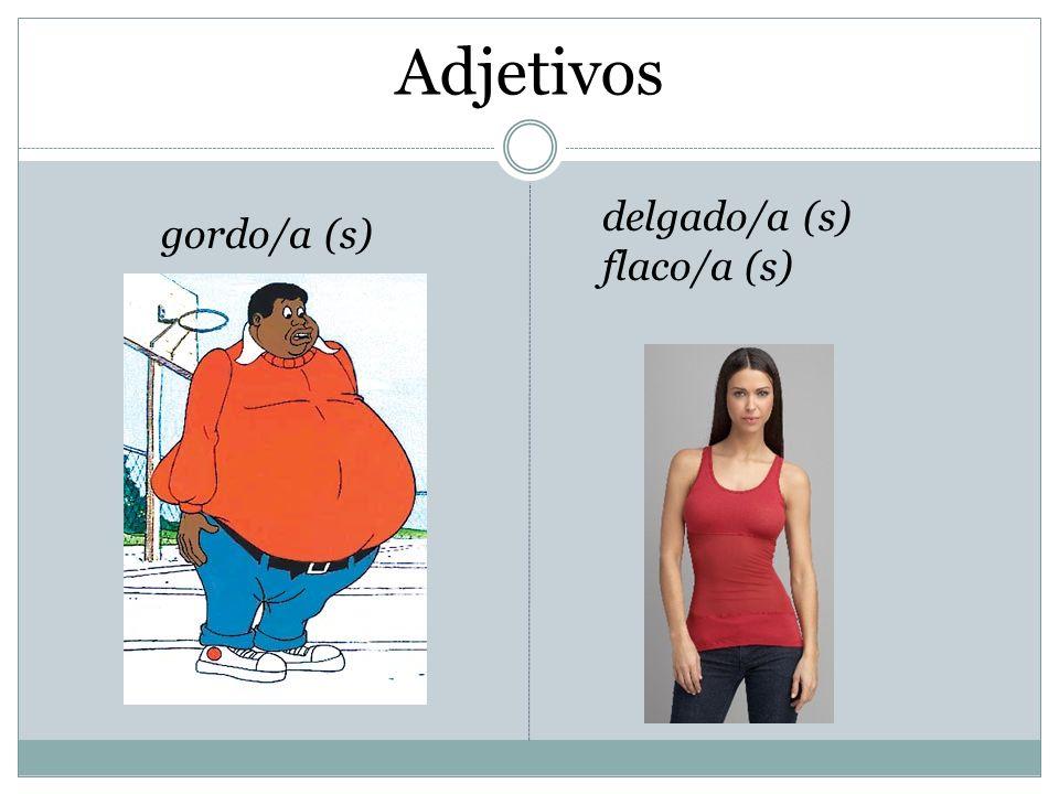 Adjetivos delgado/a (s) flaco/a (s) gordo/a (s)
