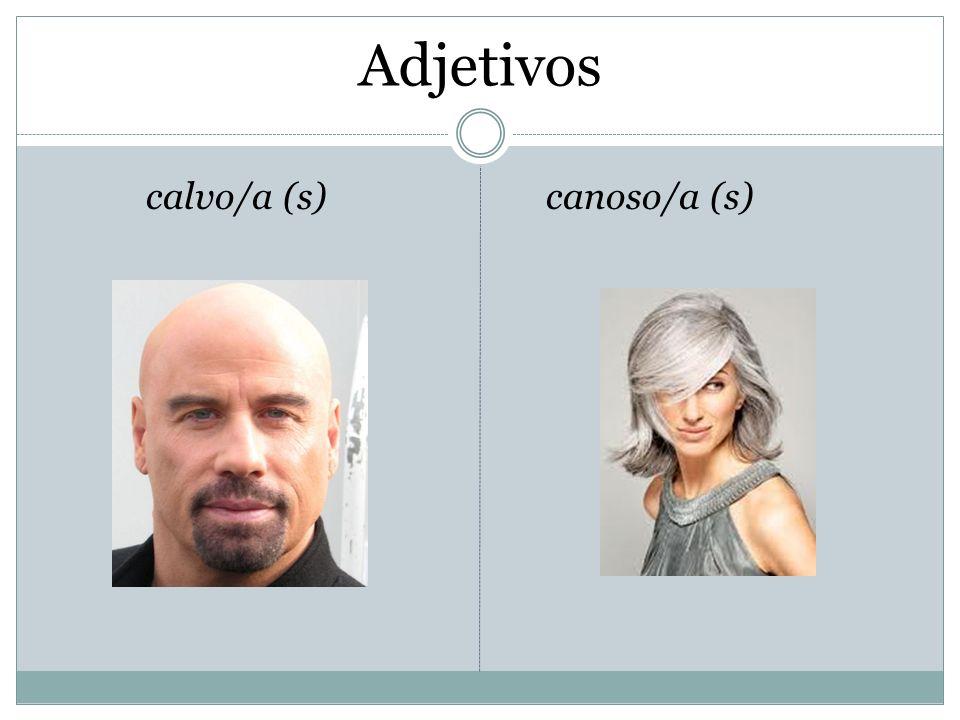 Adjetivos calvo/a (s) canoso/a (s)