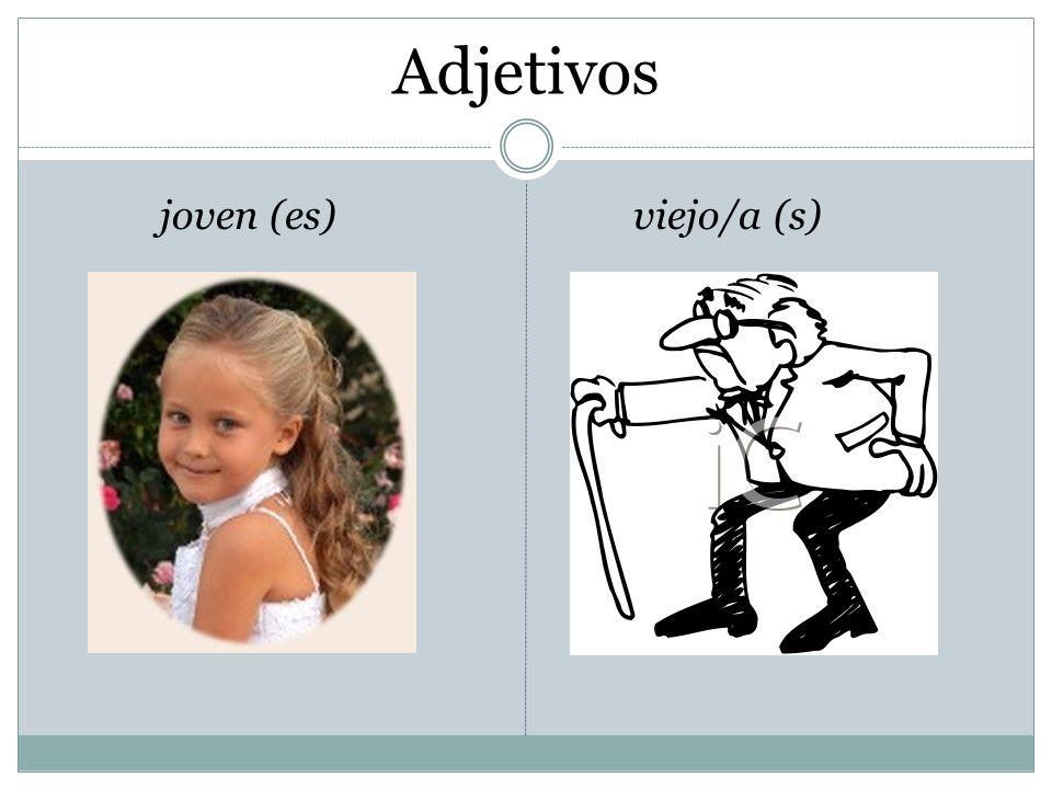 Adjetivos joven (es) viejo/a (s)