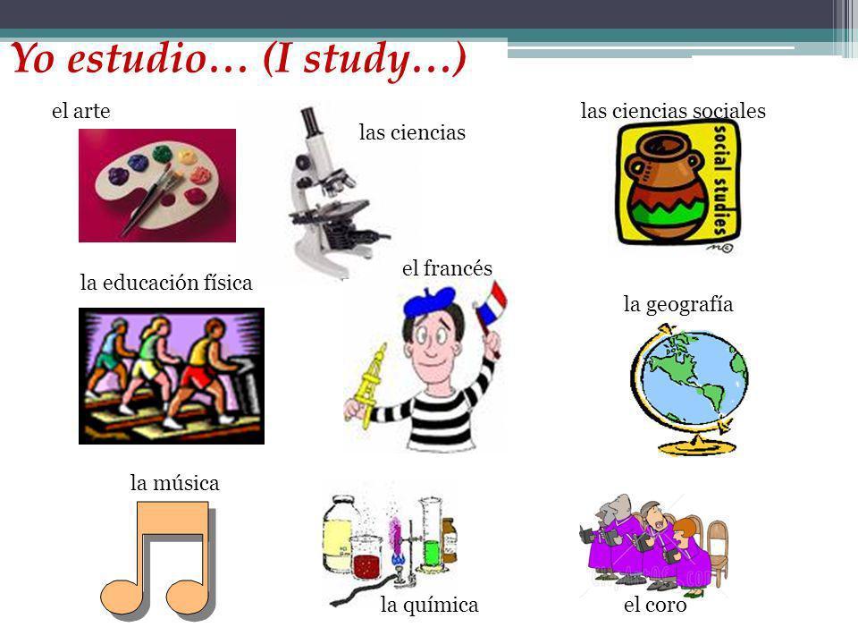 Yo estudio… (I study…) el arte las ciencias sociales las ciencias