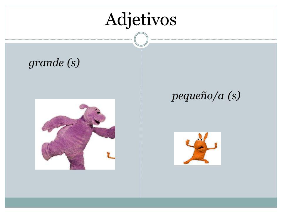 Adjetivos grande (s) pequeño/a (s)