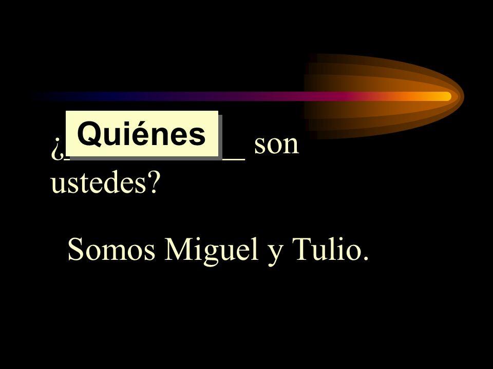 Quiénes ¿___________ son ustedes Somos Miguel y Tulio.