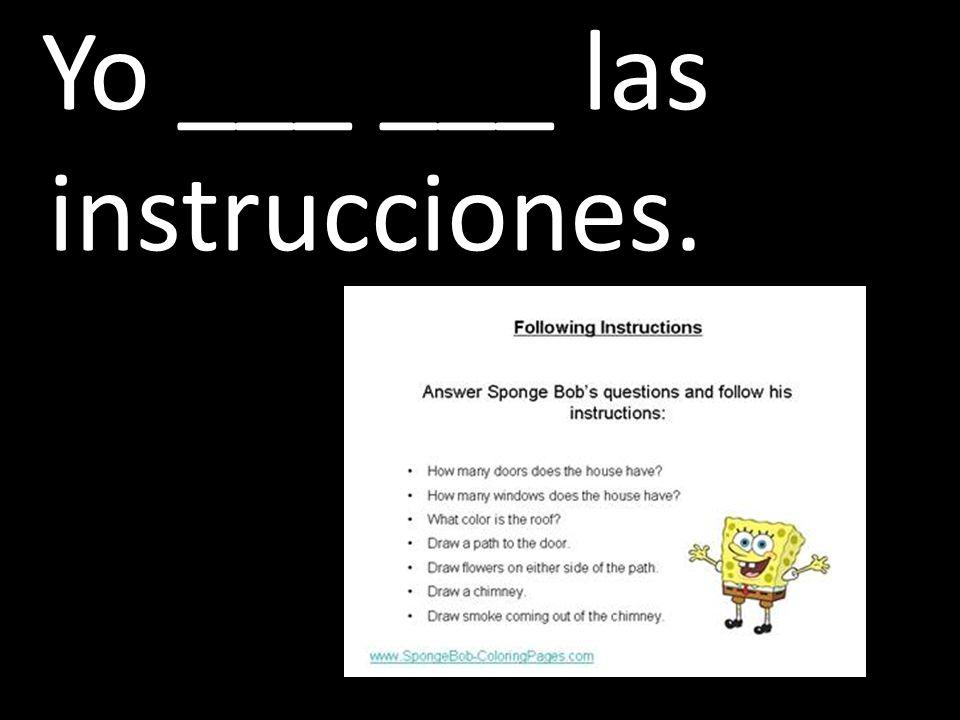 Yo ___ ___ las instrucciones.