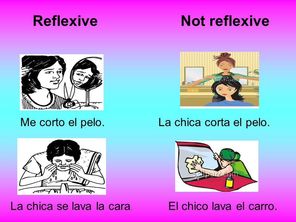Reflexive Not reflexive Me corto el pelo. La chica corta el pelo.