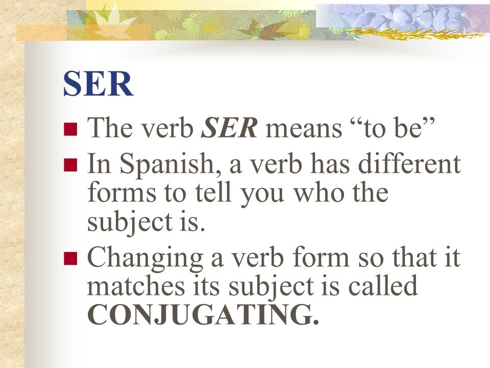 SER The verb SER means to be