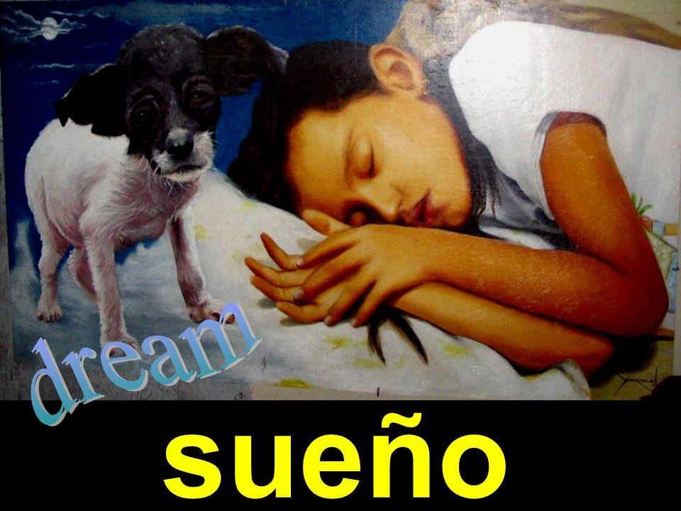 dream sueño