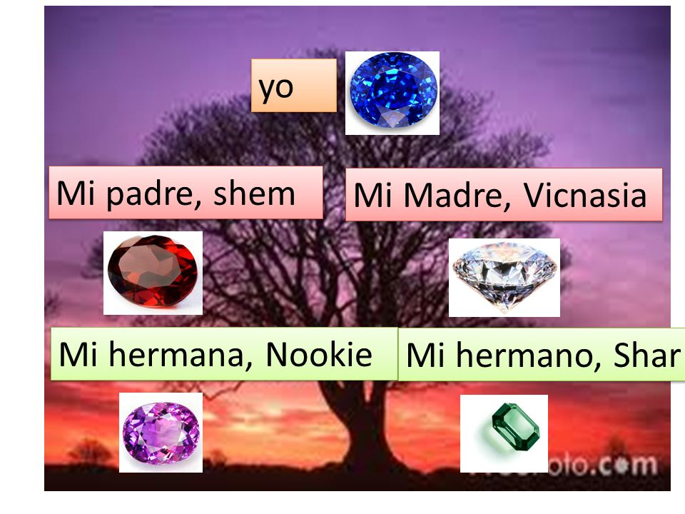 yo Mi padre, shem Mi Madre, Vicnasia Mi hermana, Nookie Mi hermano, Shar