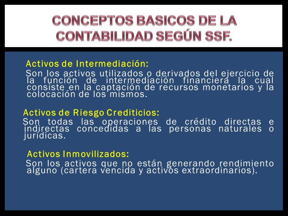 CONCEPTOS BASICOS DE LA CONTABILIDAD SEGÚN SSF.