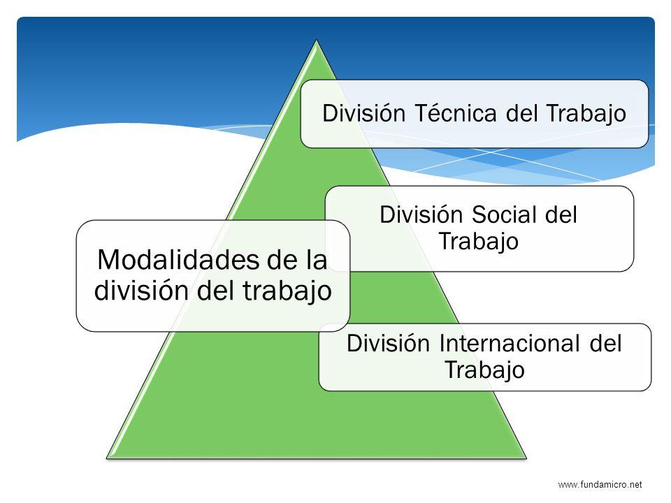Modalidades de la división del trabajo