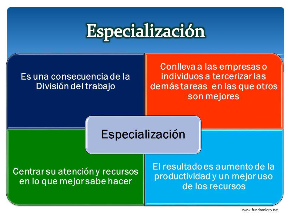 Especialización Especialización
