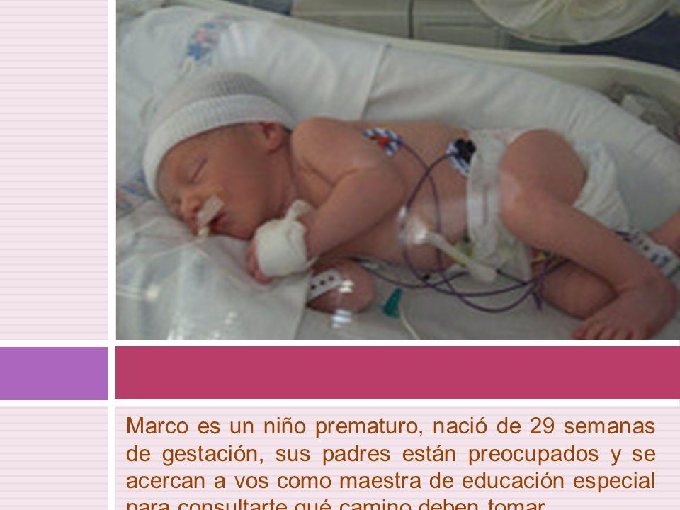 Marco es un niño prematuro, nació de 29 semanas de gestación, sus padres están preocupados y se acercan a vos como maestra de educación especial para consultarte qué camino deben tomar…