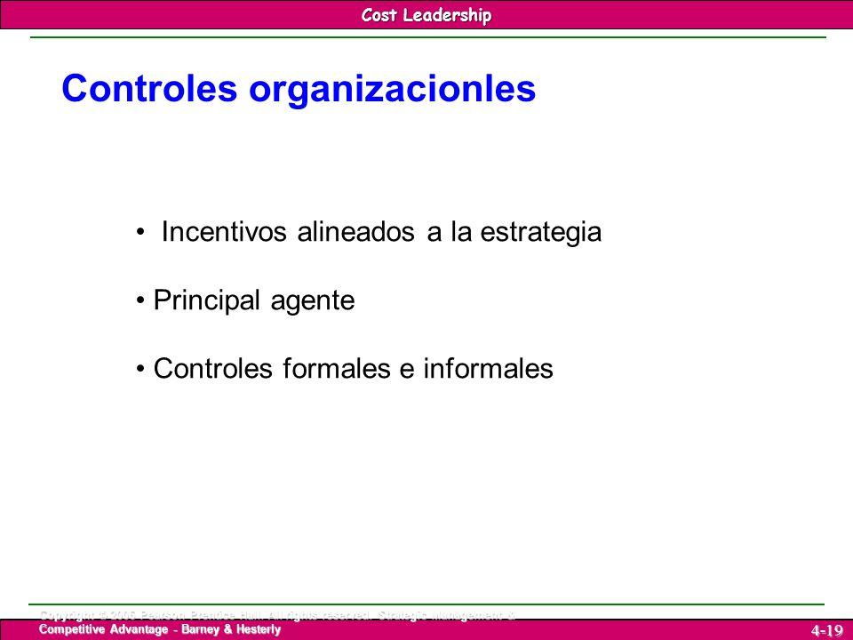 Controles organizacionles
