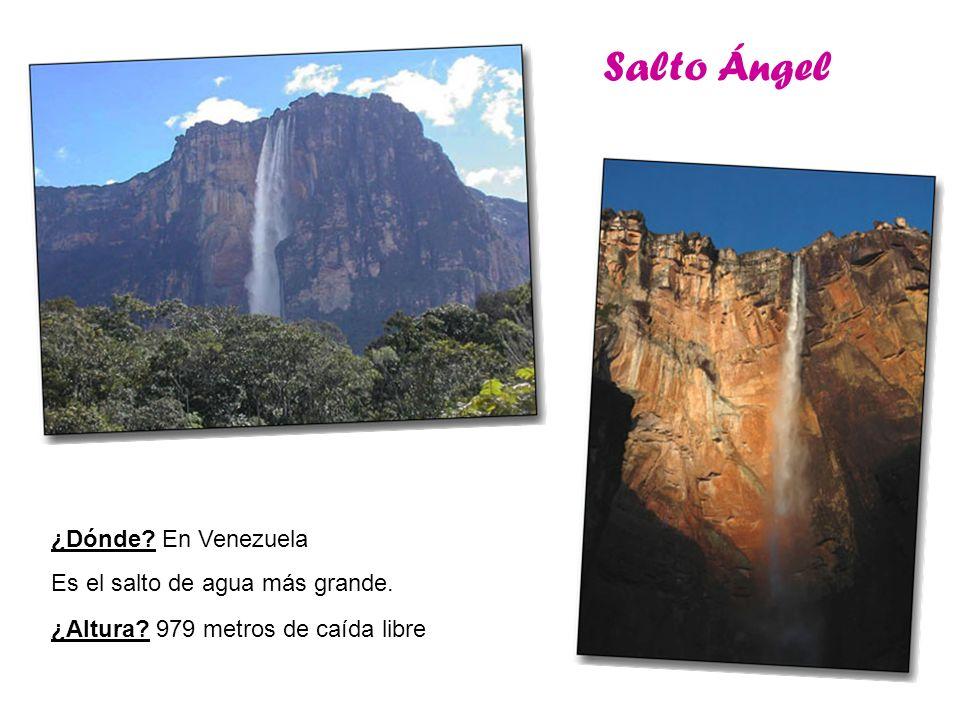 Salto Ángel ¿Dónde En Venezuela Es el salto de agua más grande.