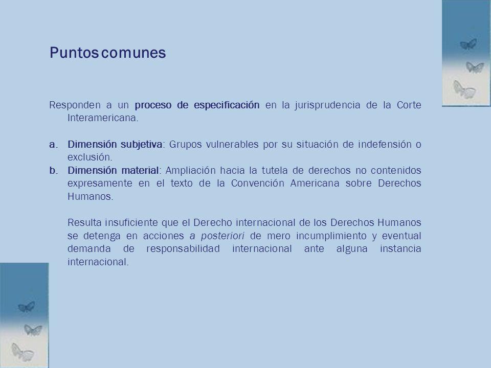 Puntos comunes Responden a un proceso de especificación en la jurisprudencia de la Corte Interamericana.