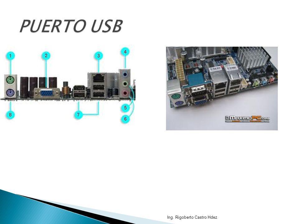 PUERTO USB Ing. Rigoberto Castro Hdez
