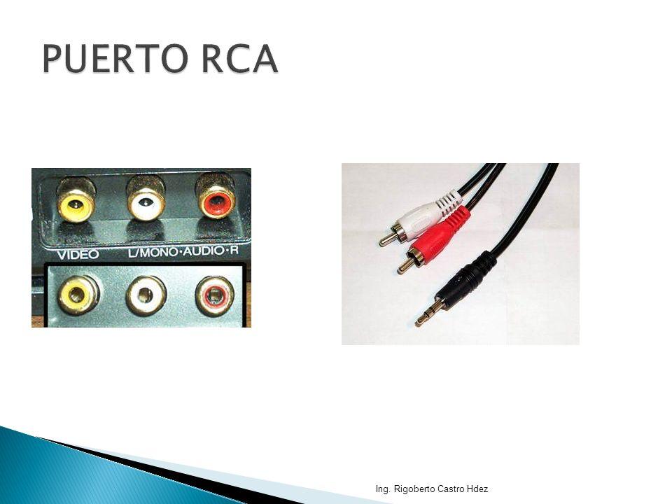 PUERTO RCA Ing. Rigoberto Castro Hdez