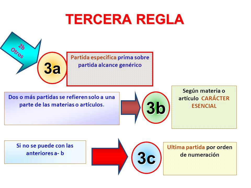 3b 3c 3a TERCERA REGLA 2b Otros