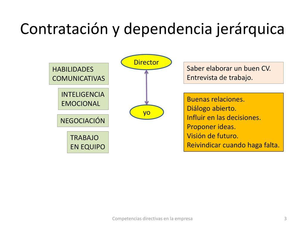Excepcional Reanudar Habilidades De Software Embellecimiento ...