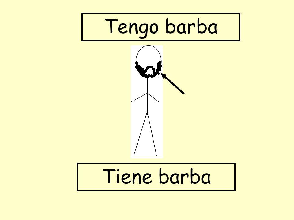 Tengo barba Tiene barba