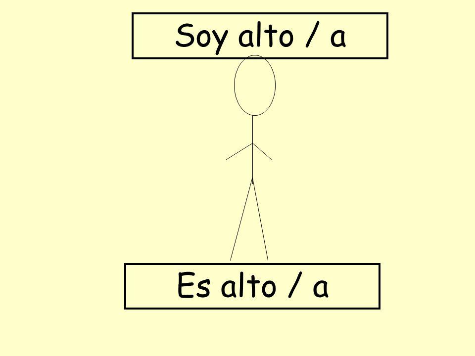 Soy alto / a Es alto / a