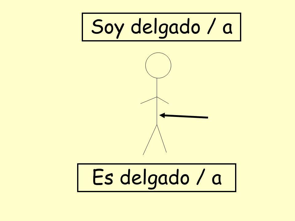 Soy delgado / a Es delgado / a