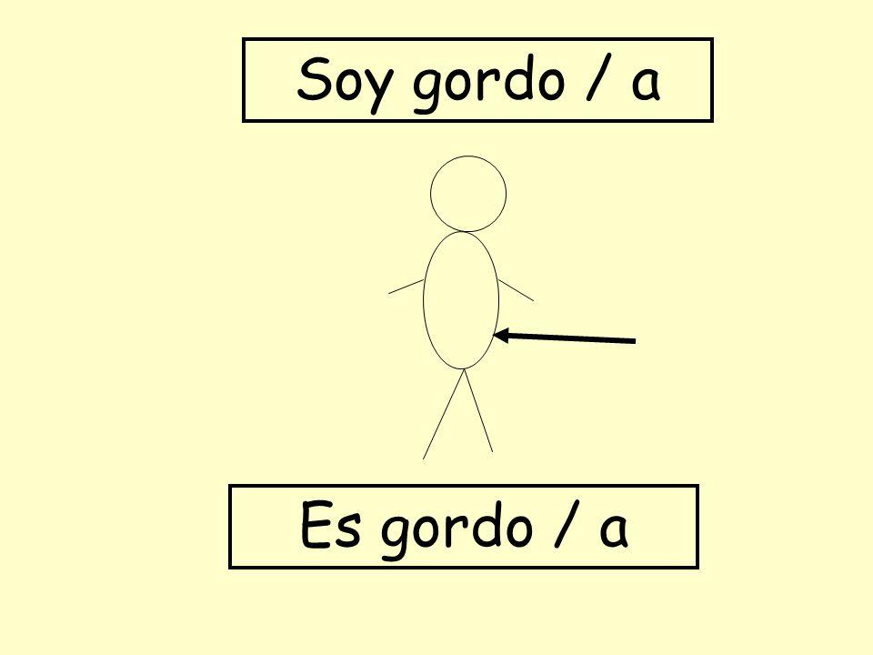 Soy gordo / a Es gordo / a