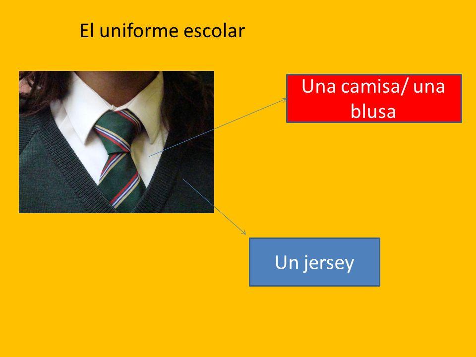El uniforme escolar Una camisa/ una blusa Un jersey