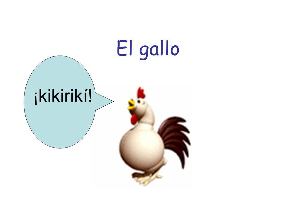 El gallo ¡kikirikí!