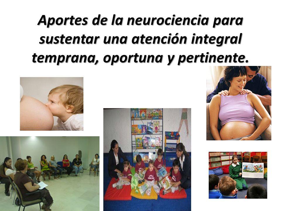 Aportes de la neurociencia para sustentar una atención integral temprana, oportuna y pertinente.