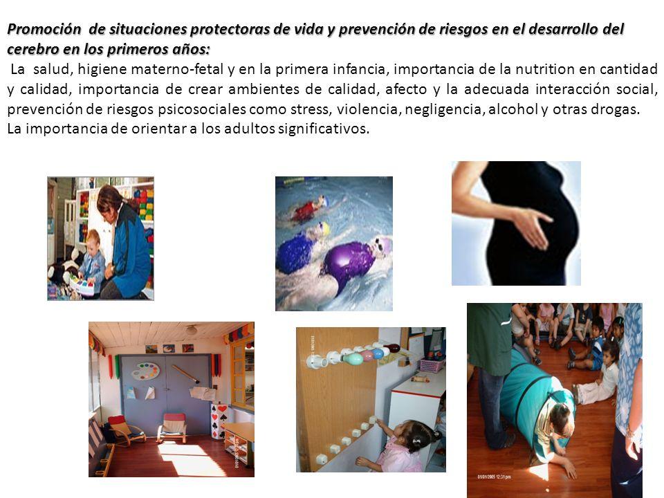 Promoción de situaciones protectoras de vida y prevención de riesgos en el desarrollo del cerebro en los primeros años: