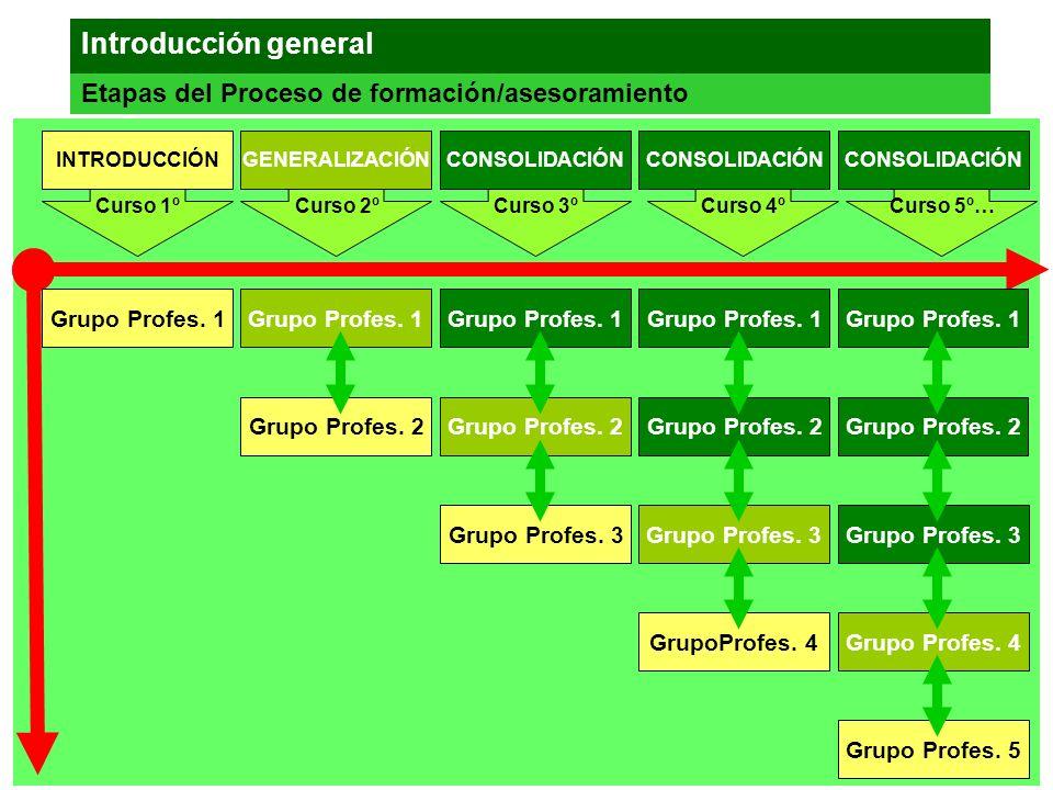Introducción general Etapas del Proceso de formación/asesoramiento