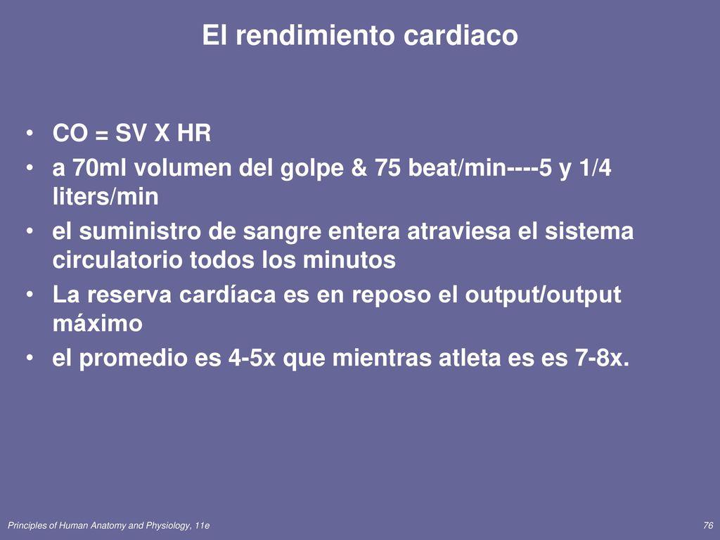 Moderno Sistema Circulatorio Hojas De Trabajo De Quinto Grado ...