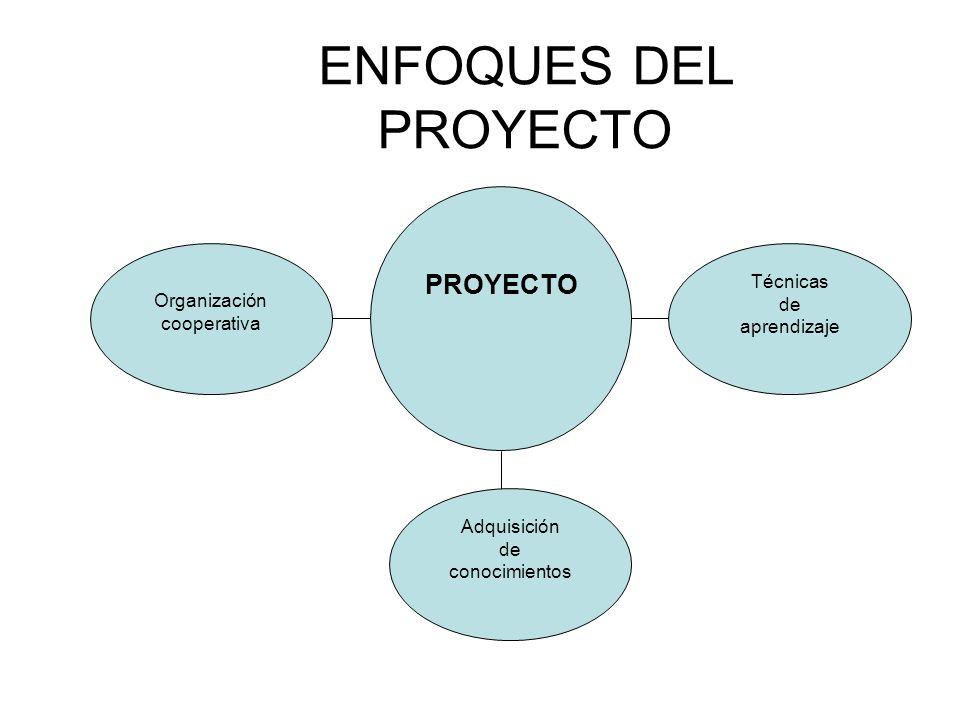 ENFOQUES DEL PROYECTO PROYECTO Técnicas Organización de cooperativa