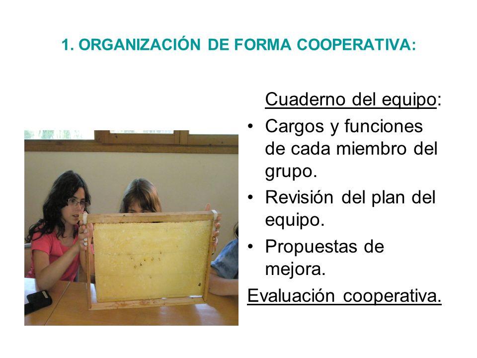 1. ORGANIZACIÓN DE FORMA COOPERATIVA:
