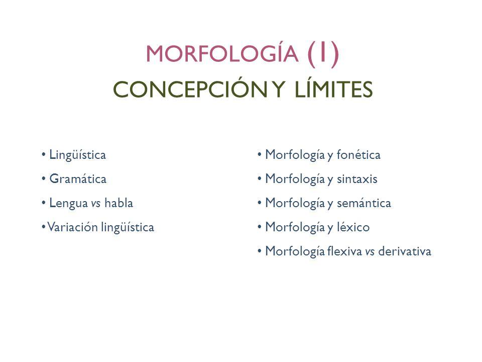 morfología (1) concepción y límites Lingüística Morfología y fonética