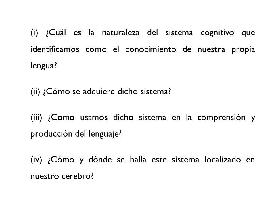 (i) ¿Cuál es la naturaleza del sistema cognitivo que identificamos como el conocimiento de nuestra propia lengua