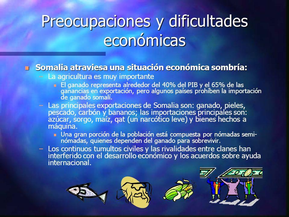 Preocupaciones y dificultades económicas