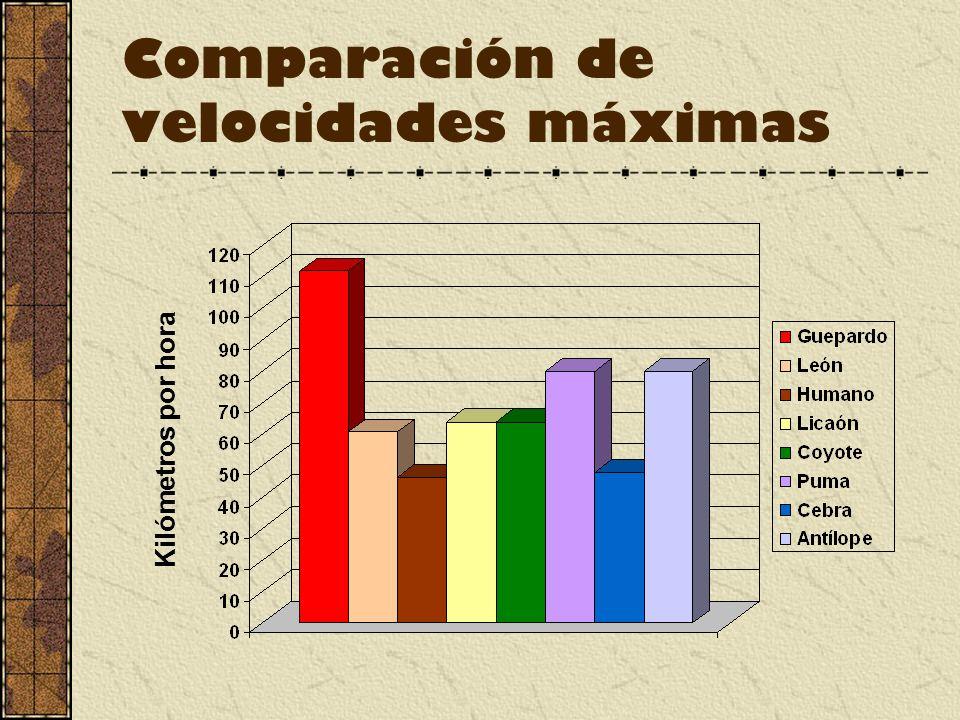 Comparación de velocidades máximas