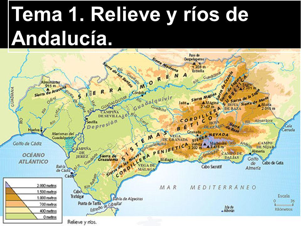 Tema 1. Relieve y ríos de Andalucía.