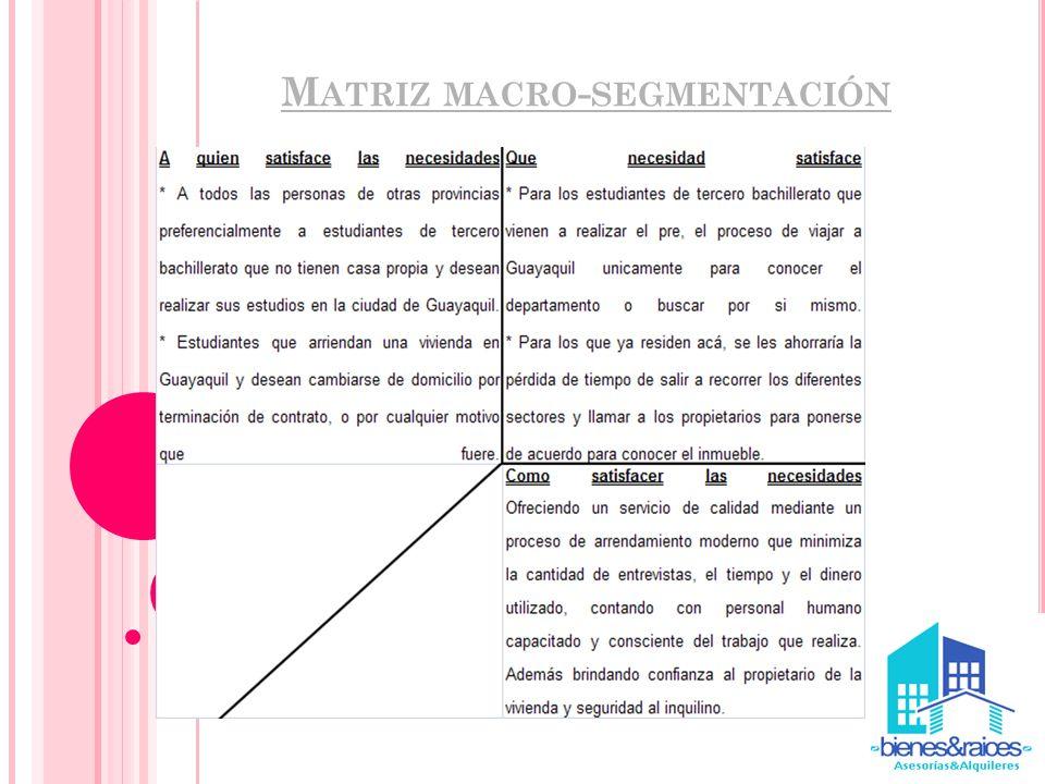 Matriz macro-segmentación
