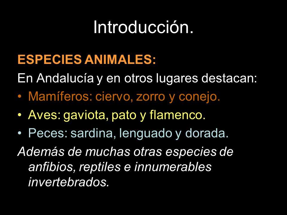 Introducción. ESPECIES ANIMALES: