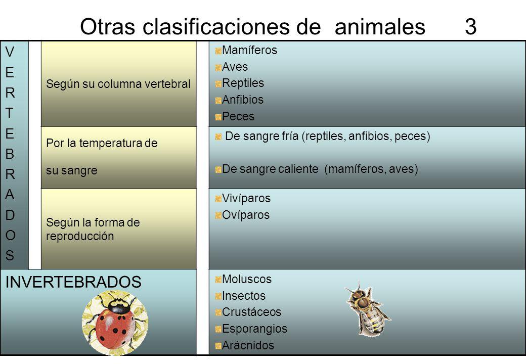 Otras clasificaciones de animales 3