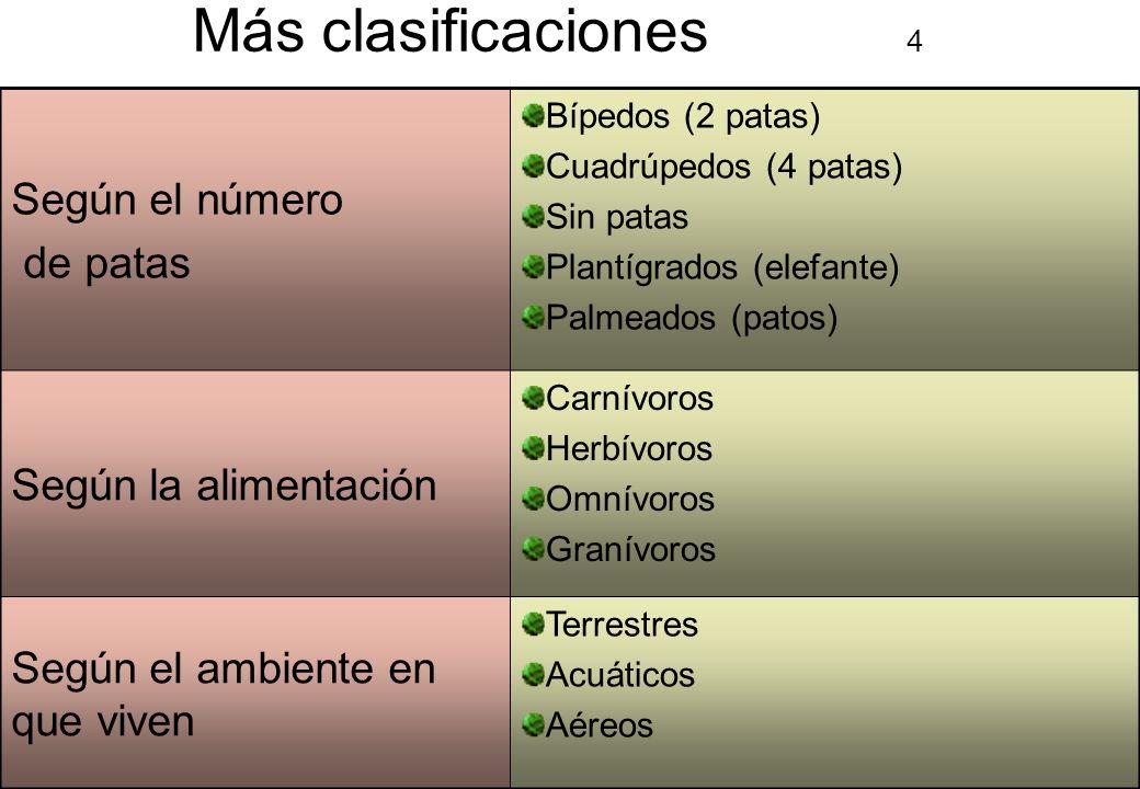 Más clasificaciones 4 Según el número de patas Según la alimentación
